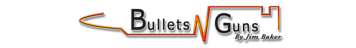 Bullets N Guns Logo